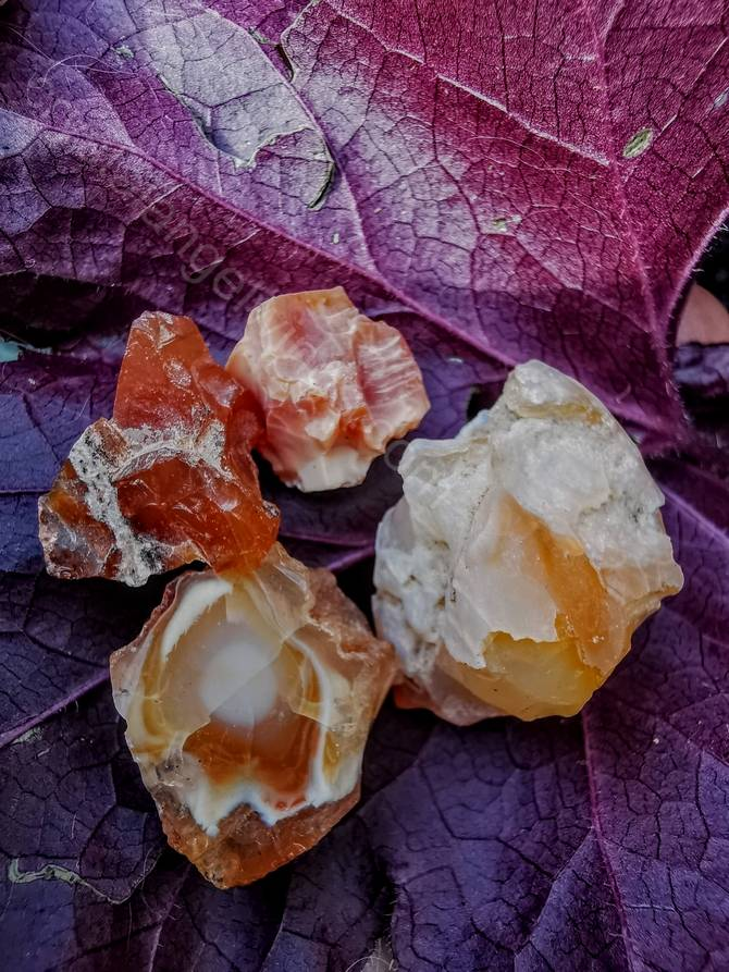 Fire Opal Rough Natural Specimens