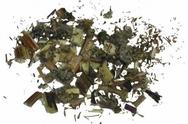 Mugwort  Incense herb - spell