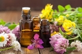 Chamomile Roman, cajaput, citronella  Essential Oil Selection,
