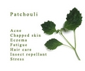 100 % PURE Essential Oils,  PATCHOULI, PINE, PEPPERMINT