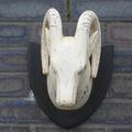Whitewash Curved Horn Deer Head