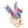 Baby Dragon Hatching From Its Egg   (Collectable)