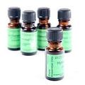 Bergamot  Essential Oil Selection, 10ml